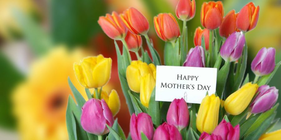 As Mothering Sunday Approaches Follow Overseas Flower Delivery In Our Exploration Of What Flowers Are The Most Popular To Give Your Mum On Mothers Day